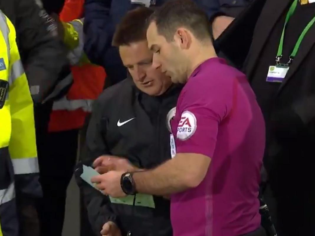Aficionado de Norwich City sustituye al árbitro en pleno juego
