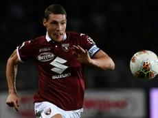 Tottenham fait une proposition au Torino pour Belotti