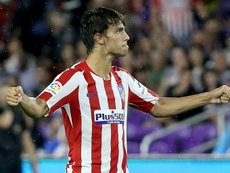 Joao Felix backed to become 'one of the best'. AFP
