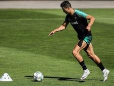 Fernando Santos qualifie Cristiano de professionnel. EFE