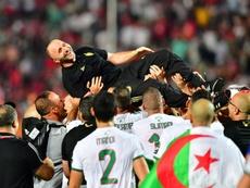 Le sélectionneur de l'Algérie Djamel Belmadi porté par ses joueurs en liesse après la victoire face au Sénégal en finale de la CAN-2019, le 19 juillet 2019 au Caire