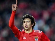 João Félix, em Madrid para assinar com Atlético. AFP