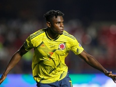 Zapata viajará a Sevilla para probar un nuevo tratamiento. EFE