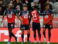 Les compos probables du match de Ligue 1 entre Toulouse et Lille. AFP