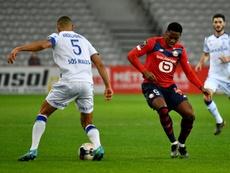 Lille et Rennes renversants, Saint-Etienne décimé et frustré. afp