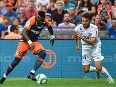 Les compos probables du match de Ligue 1 entre Montpellier et Lyon. AFP