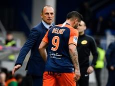 Les compos probables du match de Ligue 1 entre Angers et Montpellier. AFP