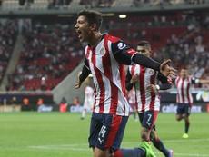 Chivas se enfrenta a Tigres. EFE