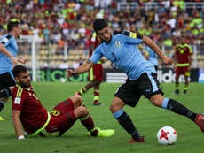 Tabarez has played down reports Suarez requires knee surgery. EFE