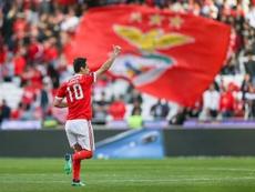 jogador do Benfica Jonas. EFE/Archivo