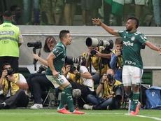Nacional retoma el 'caso Miguel Borja' contra Palmeiras. EFE/Archivo