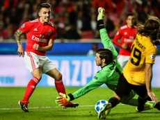 Benfica plans to renew Grimaldo (l) have not got very far up to now. EFE