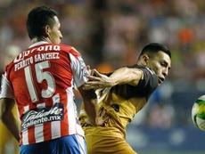 San Luis jugará la próxima temporada en la máxima  categoría. EFE