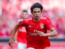 Joao Félix will only leave Benfica for 120 million Euros. EFE