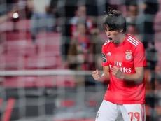 Bruno Lage recordó cómo Joao Félix se hizo un nombre en el Benfica. EFE