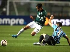 Grêmio e Palmeiras não se cansam de empatar no Brasileirão. EFE/Fernando Bizerra Jr