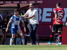 El Espanyol, a reaccionar con Machín tras su último tropiezo. EFE