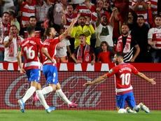 El cuadro nazarí aprovechará el partido ante el Atlético para apoyar a la causa. EFE