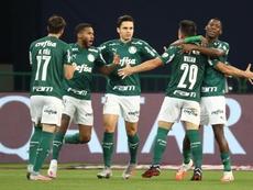 Palmeiras chega desfalcado para a Libertadores. EFE/Sebastiao Moreira/Arquivo