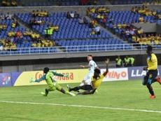 Argentina acaricia el pase gracias a Mac Allister. Argentina