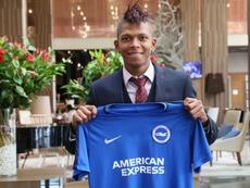 Hughton's side have announced the signing of Ecuadorian Billy Arce. BrightonAndHoveAlbion