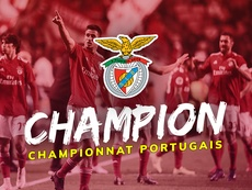 Benfica, vainqueur du championnat portugais 2018-19. BeSoccer