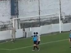 Una bandada de avispas interrumpió un partido en Argentina. Captura/Ole