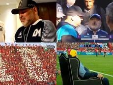 Lágrimas, habano y un sillón como trono: así ve el fútbol un Dios. Captura/TNTSports