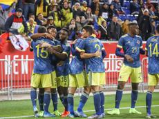 Colombia sufrió para conseguir la victoria frente a Ecuador. Twitter/FCFSeleccionCol