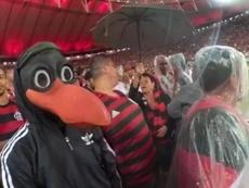Diego, assiste o jogo contra o São Paulo da arquibancada. Captura/Youtube