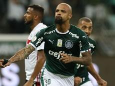 Paulista: prováveis escalações de Palmeiras e São Paulo. Palmeiras