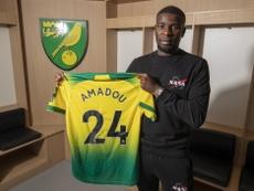 El Norwich City hizo oficial la llegada de Amadou, procedente del Sevilla. Twitter/NorwichCityFC
