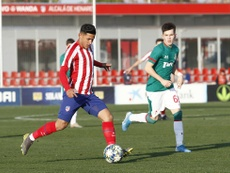 Así quedan los 'play off' de la UEFA Youth League. Twitter/AtletiAcademia