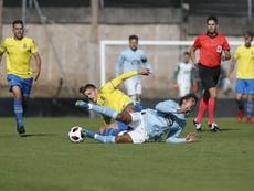Las Palmas Atlético visita al Pontevedra. Twitter/UDLP_Cantera