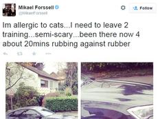 Forssell estuvo 20 minutos observando al gato. Twitter