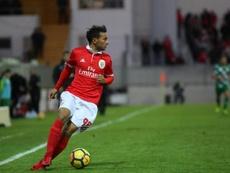 O talentoso médio tem vindo a somar cada vez mais minutos neste Benfica. Facebook/Benfica