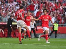 El Benfica tiene el título a tiro. Benfica