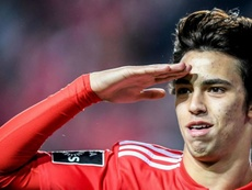 Joao Felix s'engage en faveur de l'Atlético de Madrid. AFP