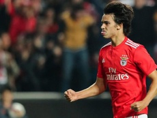 Atlético Madrid have convinced Joao Félix to join their project. EFE