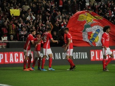 Le championnat portugais suspendu. SLBenfica