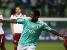 Luiz Adriano marcou um hat trick pelo Palmeiras contra o Fluminense. Twitter @avantipalmeiras
