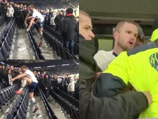 Eric Dier goes to confront a fan after Tottenham's defeat to Norwich. EFE/Archivo