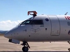 Dani Parejo aterrou com meio corpo fora do avião. Twitter/Carrusel