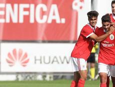 Rafael Brito renueva con el Benfica. SLBenfica