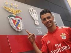Corchia reforça Benfica. Twitter/SLB