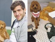 El perro de Sergi Roberto es una estrella en Instagram. Instagram/Balooitsme