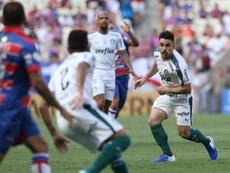 Palmeiras sigue a la caza de Flamengo. Palmeiras