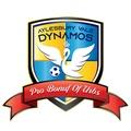 Aylesbury Vale Dynamos