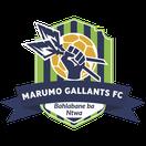 Marumo Gallants FC