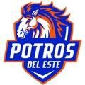 Costa del Este